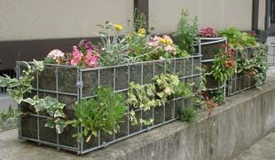 mesh-garden-03